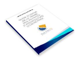 Livre blanc : guide d'usage de la trame des activités d'architecture d'entreprise